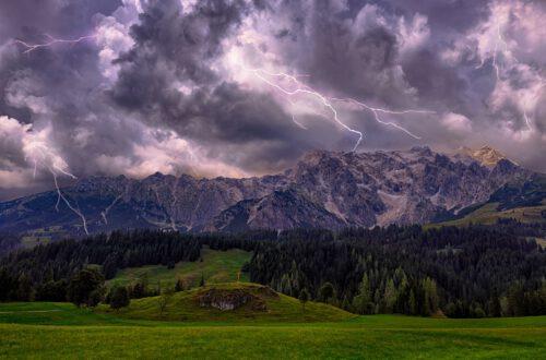 Bild von Bruno /Germany auf Pixabay